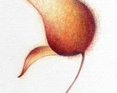 Simple Elegance - Original Drawing - Flower