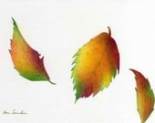 Three Leaves - Original Drawing - Three Leaves Floating - Colorful