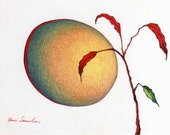 Red Moon Red Leaf - Original Nature Drawing