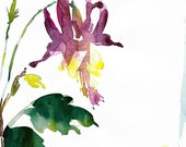 original watercolor \/ columbine red \/ ON HOLD for COLLECTOR