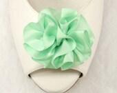 Mint Shoe clips-  satin ribbon flower- Green carnation