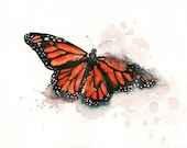 MONARCH BUTTERFLY by DIMDI Original watercolor painting 10X8inch