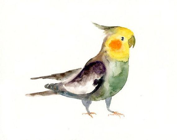 COCKATIEL by DIMDI Original watercolor painting 10x8inch