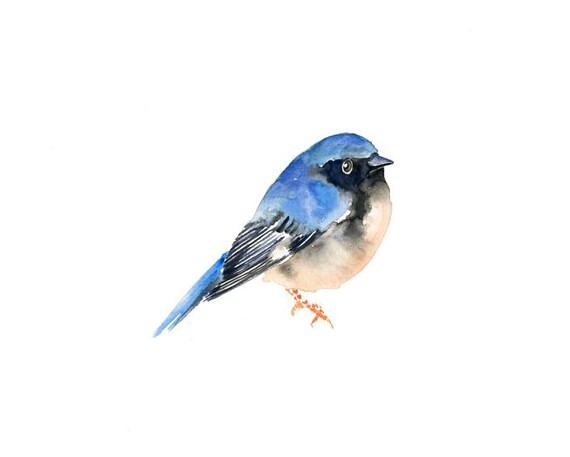 BLUE WARBLER by DIMDI  Original watercolor painting 10X8inch