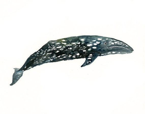 GREY WHALE by DIMDI  Original watercolor painting 10X8inch