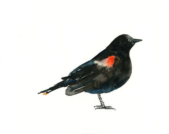 RED winged BLACKBIRD by DIMDI Original watercolor painting 10X8inch