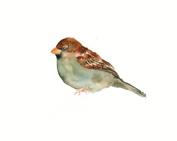 SPARROW by DIMDI Original watercolor painting 10x8inch