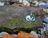 Recycled Aluminum Can Earrings  - Fresca