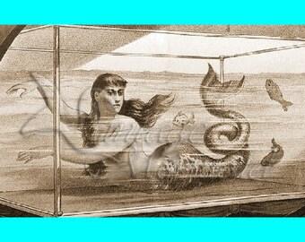 s66 MERMAID QUILT FABRIC Circa Sepia Mermaid Fabric Block Applique Mermaid Quilt Panel.