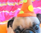 PARTY HAT dog or cat fits all sizes