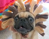 ROAR cat or dog Lion costume - made for YOUR pet