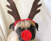 Christmas Party Decor - RUDOLPH the red nosed dog or cat CHRISTMAS ANTLERS