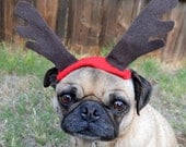 Holiday Decor Christmas PICTURE PROP dog or cat deer rudoloph ANTLERS