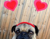 Valentines Day Dog Heart Hat - LOVE bug  HEART Hat for ANY size pet-