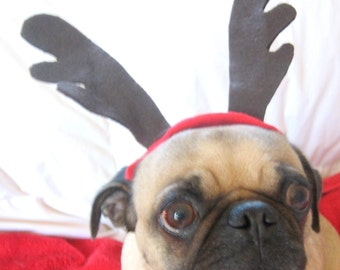 dog or cat CHRISTMAS ANTLERS