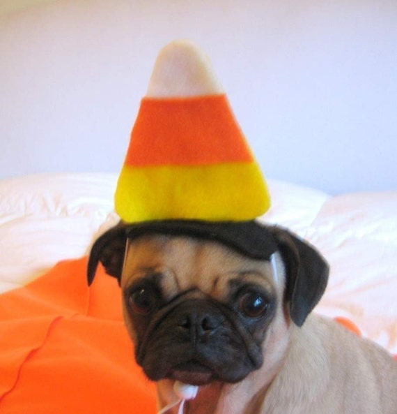 RESERVED for missy CANDY CORN pet hat
