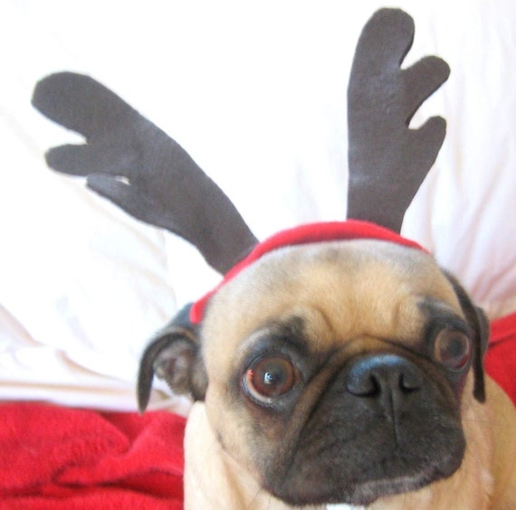 Reserved for  Tracyezpr Holiday Decor - CHRISTMAS ANTLERS for any size pet
