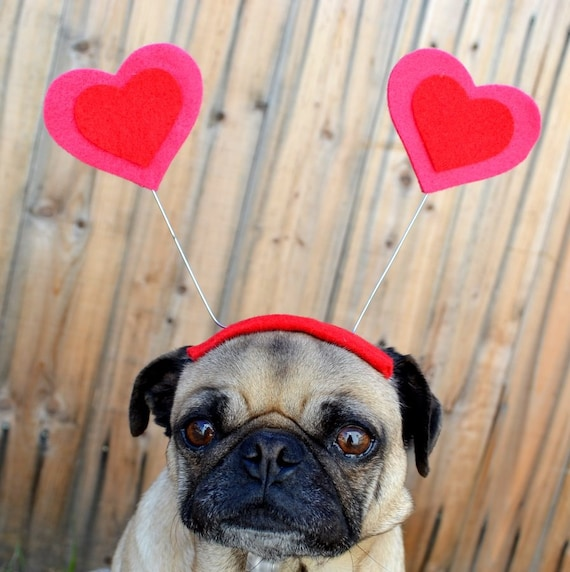 Valentines Day  - LOVE bug  HEART Hat for all size pet - ORDER by Feb 7th for a V day Delivery! Guaranteed!