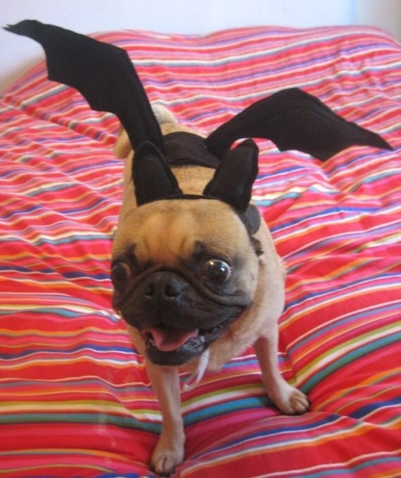 how to make toy bat wings out of black leather