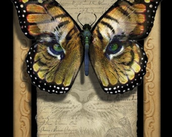 Crypto-Entomology Art Print by Brian Giberson - The Cat's Eye Butterfly