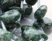 6 Green and Creamy White Tree Agate Briolettes 15mm by 10mm