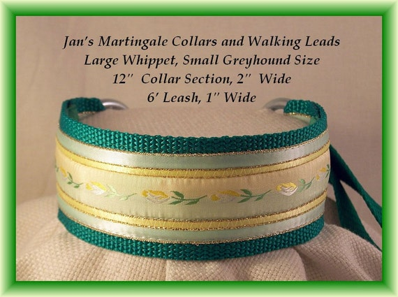 Martingale Dog Collar and Leash Combination Walking Lead, Medium, Whippet Size, green