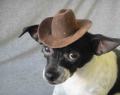 Indiana Jones hat for dog or cat
