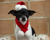 Christmas  santa  hat for dog or cat
