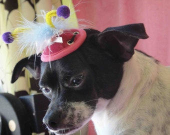 Very cute mini hat for dog