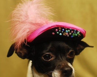 Hat for dog or cat