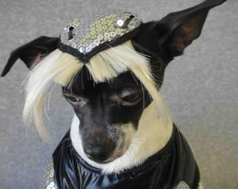 Lady Gaga hat for dog or cat