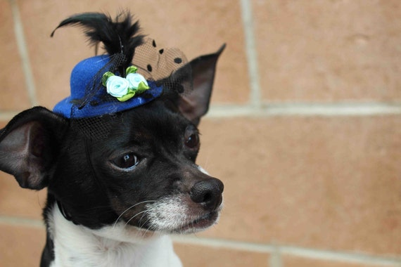 Cute blue color  mini  hat with feather and flowers for dog or cat
