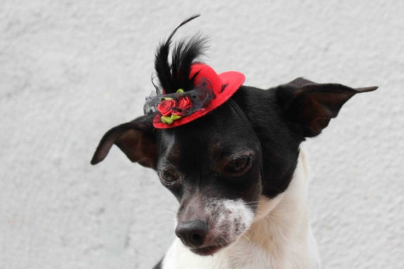 Cute red color  mini  hat with feather and flowers for dog or cat