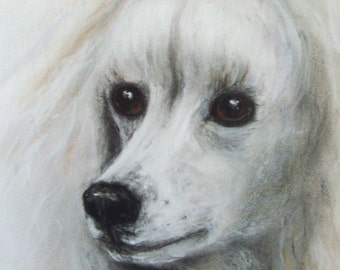 """Original Pastel Painting, Poodle Portrait, """"ANNETTE"""" One of a kind, 16"""" x 20"""", Framed and Ready"""