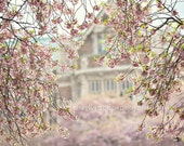 "shabby chic home decor, ""pink dream"" landscape, building, cherry blossoms, fine art print, spring, nature, pastel photograph - VintageChicImages"