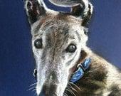 "Custom Dog Portrait Painting Pet Pastel Art 11x14"" Original Drawing by Kathy Keller Bauer"