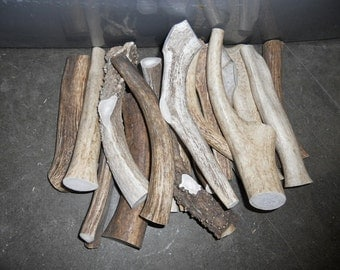 1 POUND of Deer and Elk Antler Dog Chew Toys- Pick your Size