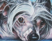 chinese crested dog art CANVAS print of LA Shepard painting 8x10 portrait