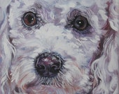 Poodle art portrait CANVAS print of LA Shepard painting 12x12