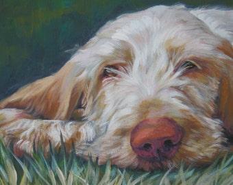 Spinone Italiano dog art portrait CANVAS print of La Shepard painting 12x16