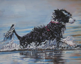 Portuguese Water Dog art giclee CANVAS print of LA Shepard painting 12x16