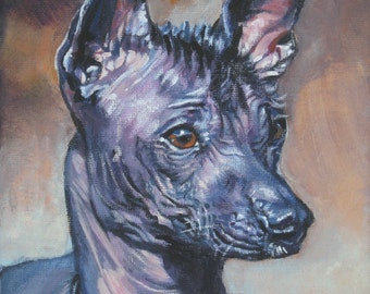 Mexican Hairless dog xolo art CANVAS print of LA Shepard painting 8x8