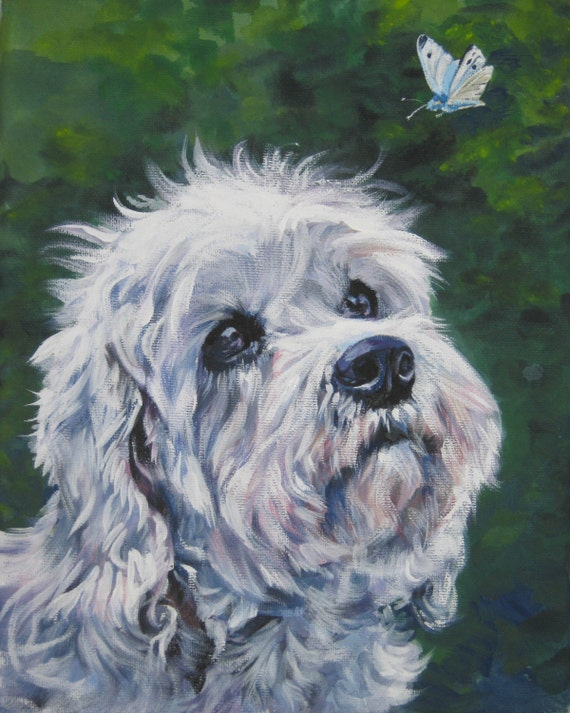Dandie Dinmont Terrier art print CANVAS print by LA Shepard 8x10