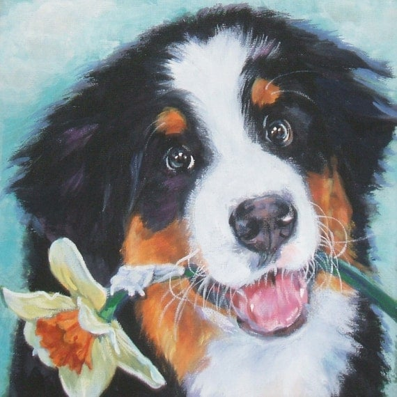 Bernese Mountain Dog art CANVAS print of LA Shepard painting 8x8 dog portrait