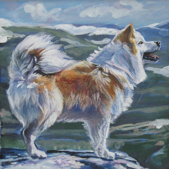 Icelandic Sheepdog art print CANVAS print of LA Shepard painting 12x12