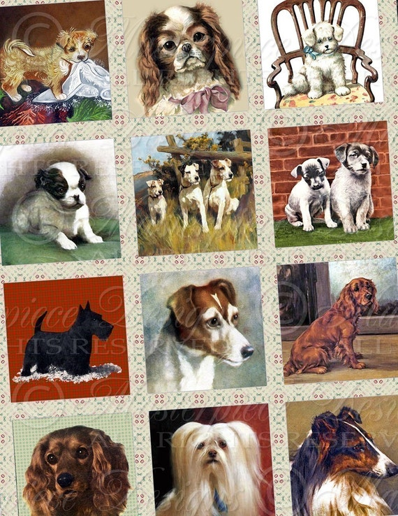 Man's Best Friend / Dogs / Puppies - 1x1 Inch Square Tiles Digital JPG Collage Sheet