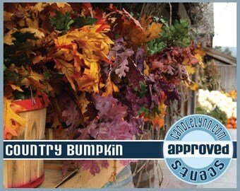 COUNTRY BUMPKIN Clam Shell Package - Tarts - Break Apart Melts