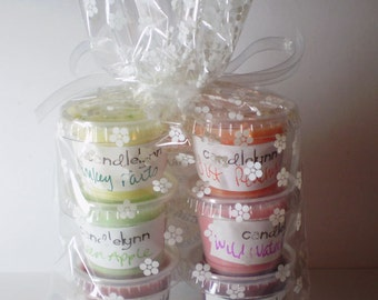 6 Assorted Soy Wax TART LITTLES - Ready to Ship