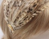 HB-FT-CB-05 Cream and Brown Striped Feather Headband (Free Shipping)