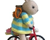 MY BICYCLE pdf Email Knit PATTERN